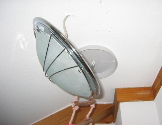 Vom Papagei demontierte Lampe