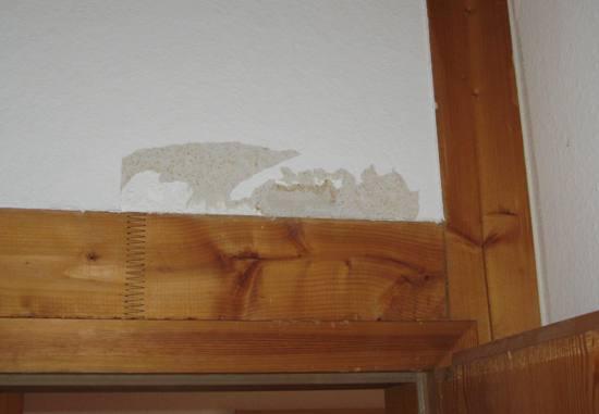 Schaden durch Papageien an der Wand